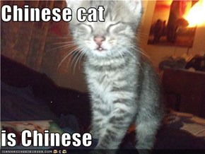 Chinese cat  is Chinese