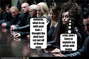 bellatrix, what is up with your hair, I thought the dark lord cut out all of those mats