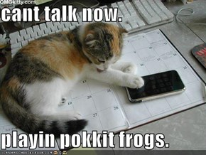 cant talk now.  playin pokkit frogs.