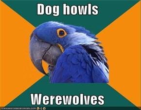 Dog howls  Werewolves