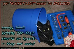 yor *BUCKET LIST* needz ~
