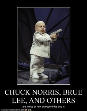 CHUCK NORRIS, BRUE LEE, AND OTHERS