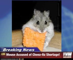 Breaking News - Mouse Accused of Cheez-Itz Shortage!