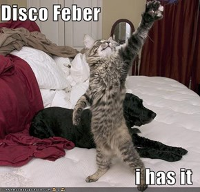 Disco Feber  i has it