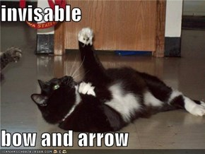 invisable  bow and arrow