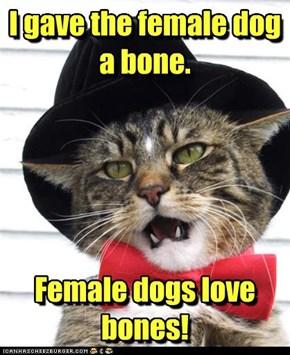 I gave the female dog a bone.      Female dogs love bones!