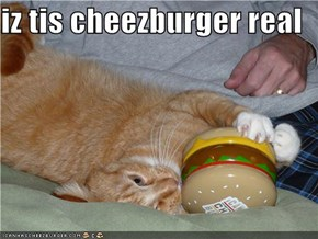 iz tis cheezburger real