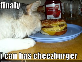 finaly  i can has cheezburger