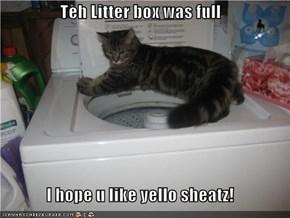 Teh Litter box was full  I hope u like yello sheatz!