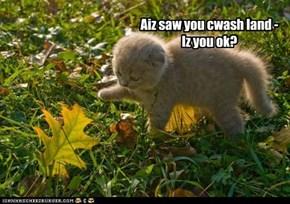 Aiz saw you cwash land - Iz you ok?
