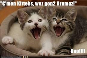 """C'mon Kittehs, wez gon2 Grnmaz!""  Nao!!!!"