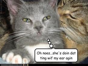 Whisper sweet nutins