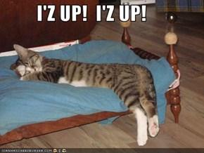 I'Z UP!  I'Z UP!