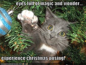 eyes full of magic and wonder...   experience christmas posing!
