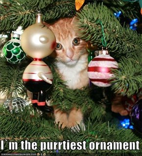 I`m the purrtiest ornament