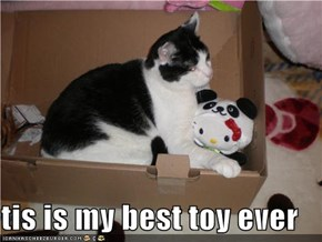 tis is my best toy ever