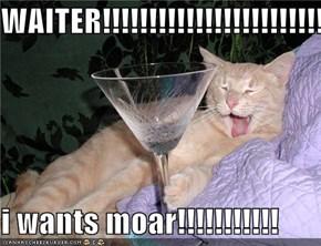 WAITER!!!!!!!!!!!!!!!!!!!!!!!!!!  i wants moar!!!!!!!!!!!