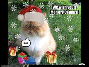 Meh-rry Catmus!
