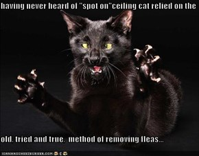 "having never heard of ""spot on""ceiling cat relied on the  old, tried and true,  method of removing fleas..."