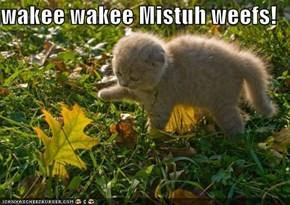 wakee wakee Mistuh weefs!
