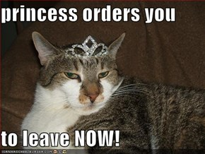 princess orders you  to leave NOW!