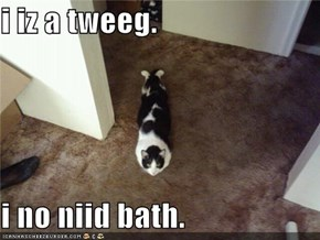 i iz a tweeg.  i no niid bath.