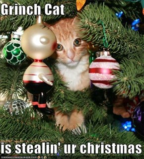 Grinch Cat  is stealin' ur christmas