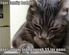 Your family budget  does not include enough $$ for noms