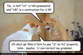 "No, iz not! ""Ur"" iz teh possessive and ""UR"" iz a contraction for U R!!"