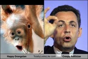 Happy Orangutan Totally Looks Like Creepy Politician