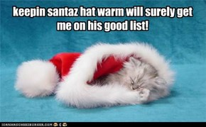 keepin santaz hat warm will surely get me on his good list!