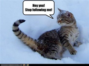 Stop following me!