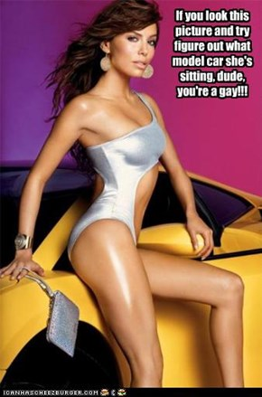 If you look this picture and try figure out what model car she's sitting, dude, you're a gay!!!