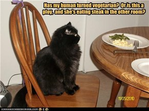 Has my human turned vegetarian?  Or is this a ploy,  and she's eating steak in the other room?