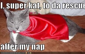 I, super kat, to da rescue  after my nap