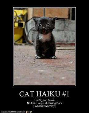 CAT HAIKU #1