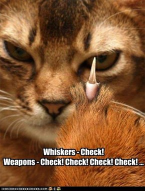 Whiskers - Check!  Weapons - Check! Check! Check! Check! ...