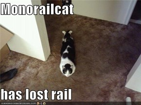 Monorailcat  has lost rail