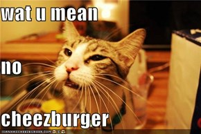 wat u mean no cheezburger