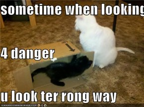 sometime when looking 4 danger u look ter rong way