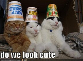 do we look cute