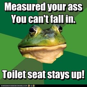 Foul Bachelor Frog: Toilet seat stays up!