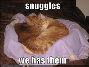 snuggles  we has them