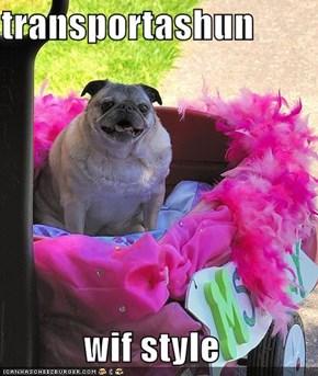 transportashun  wif style