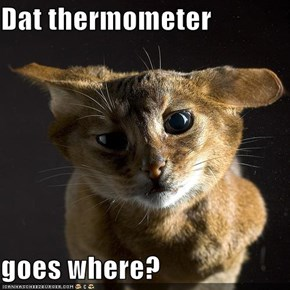 Dat thermometer  goes where?