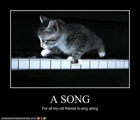 A SONG