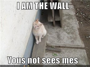I AM THE WALL  Yous not sees mes