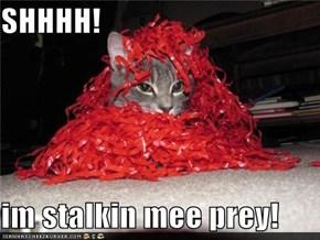 SHHHH!  im stalkin mee prey!