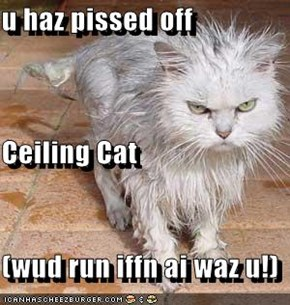 u haz pissed off  Ceiling Cat (wud run iffn ai waz u!)