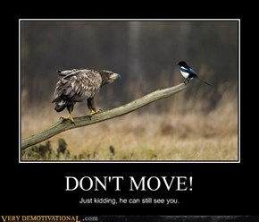 DON'T MOVE!